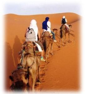 rois mages desert